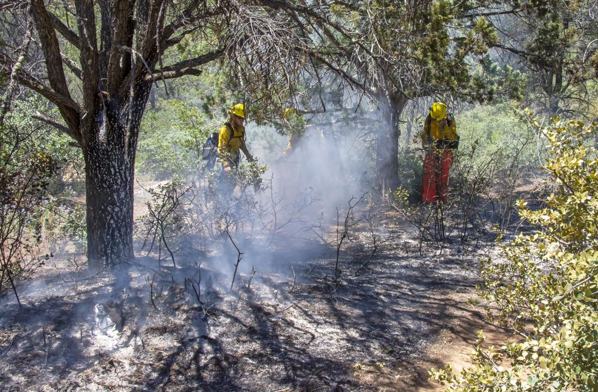 Firefighters work to contain a forest fire caused by an illegal camp fire