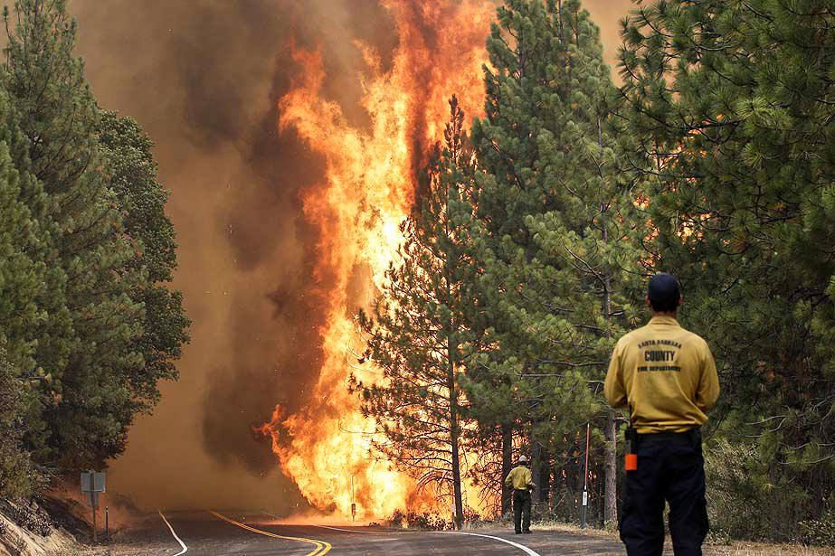Controlled burns reduce health dangers of wildfire smoke | Forest