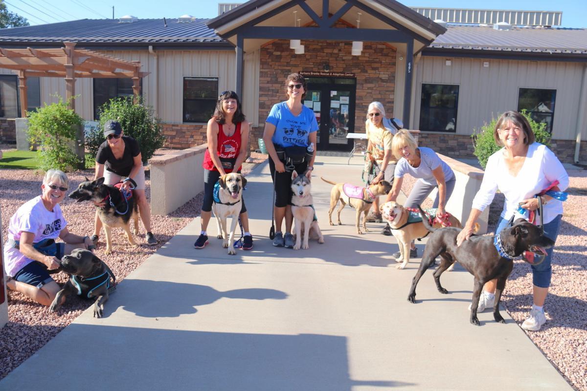 Group shot the ladies who walk HZCAZ dogs