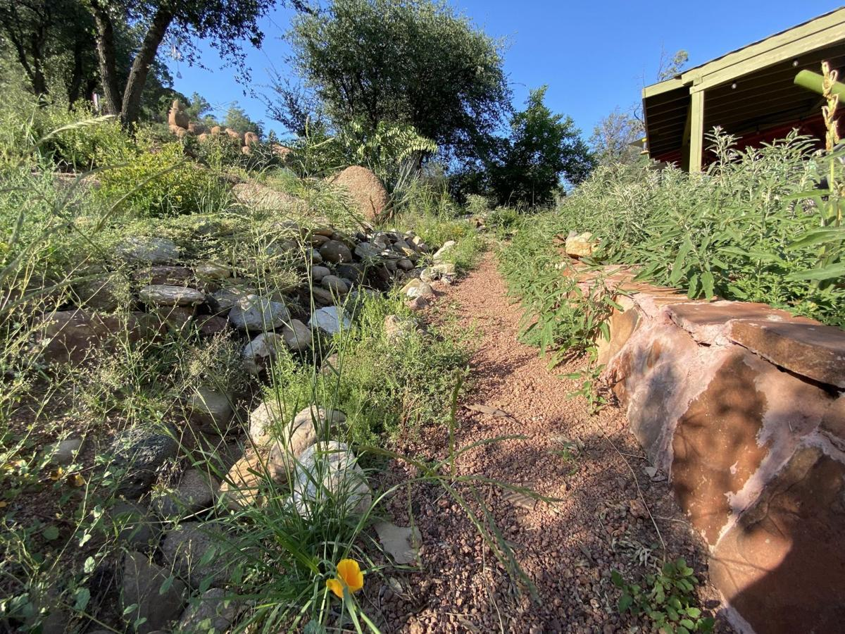Four time weeded flower beds monsoon 2021