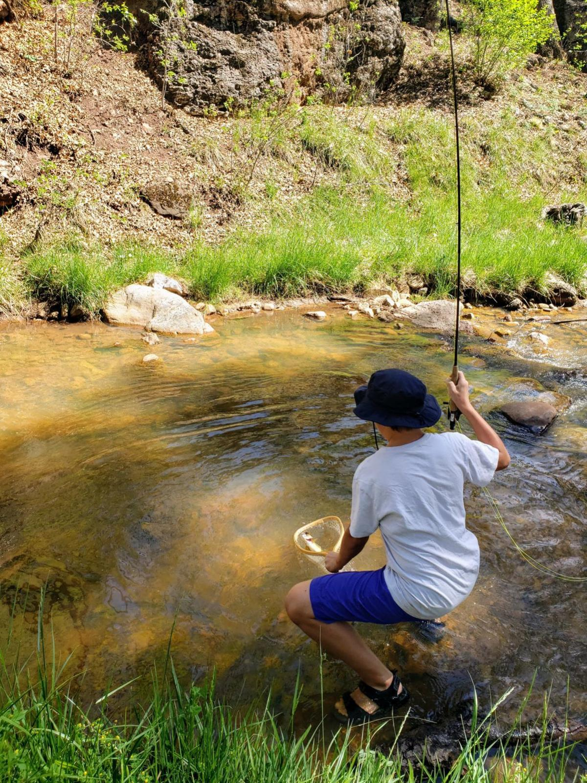 Owen netting Gila trout