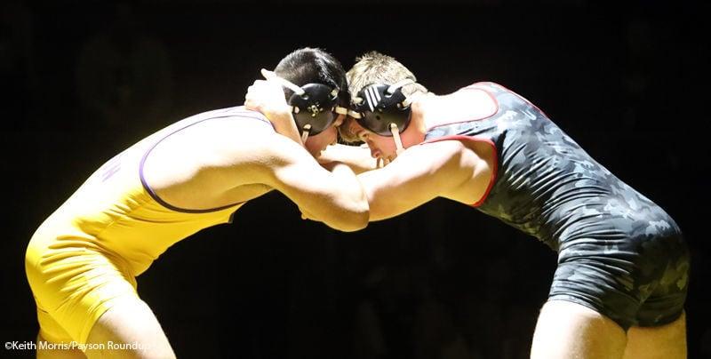 WRS Sectional Soto Sellis Wrestles In Final w800pix