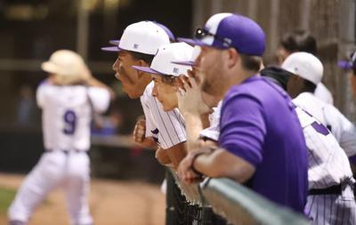 Baseball Vs Blue Ridge Payson Bench