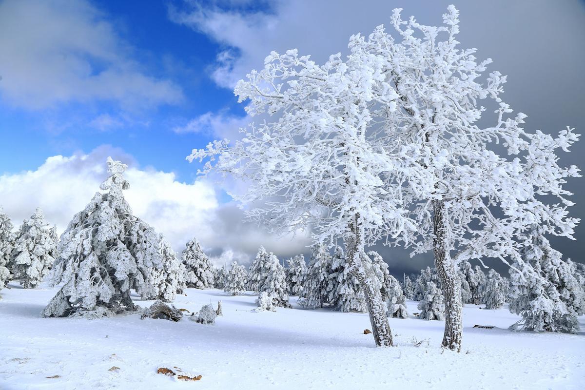 Snow on Rim