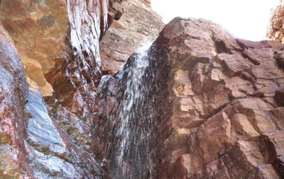 Barnhardt Trail 1