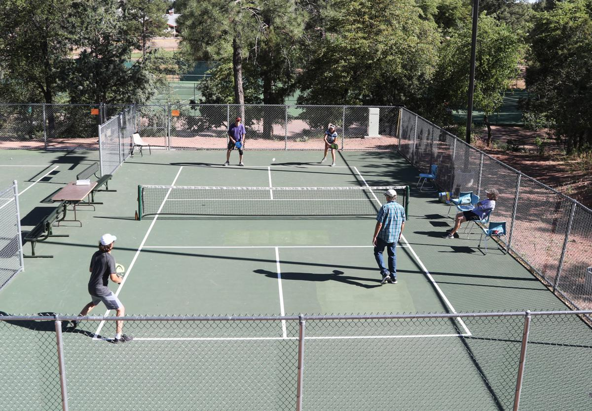Two Older Pickleball Courts
