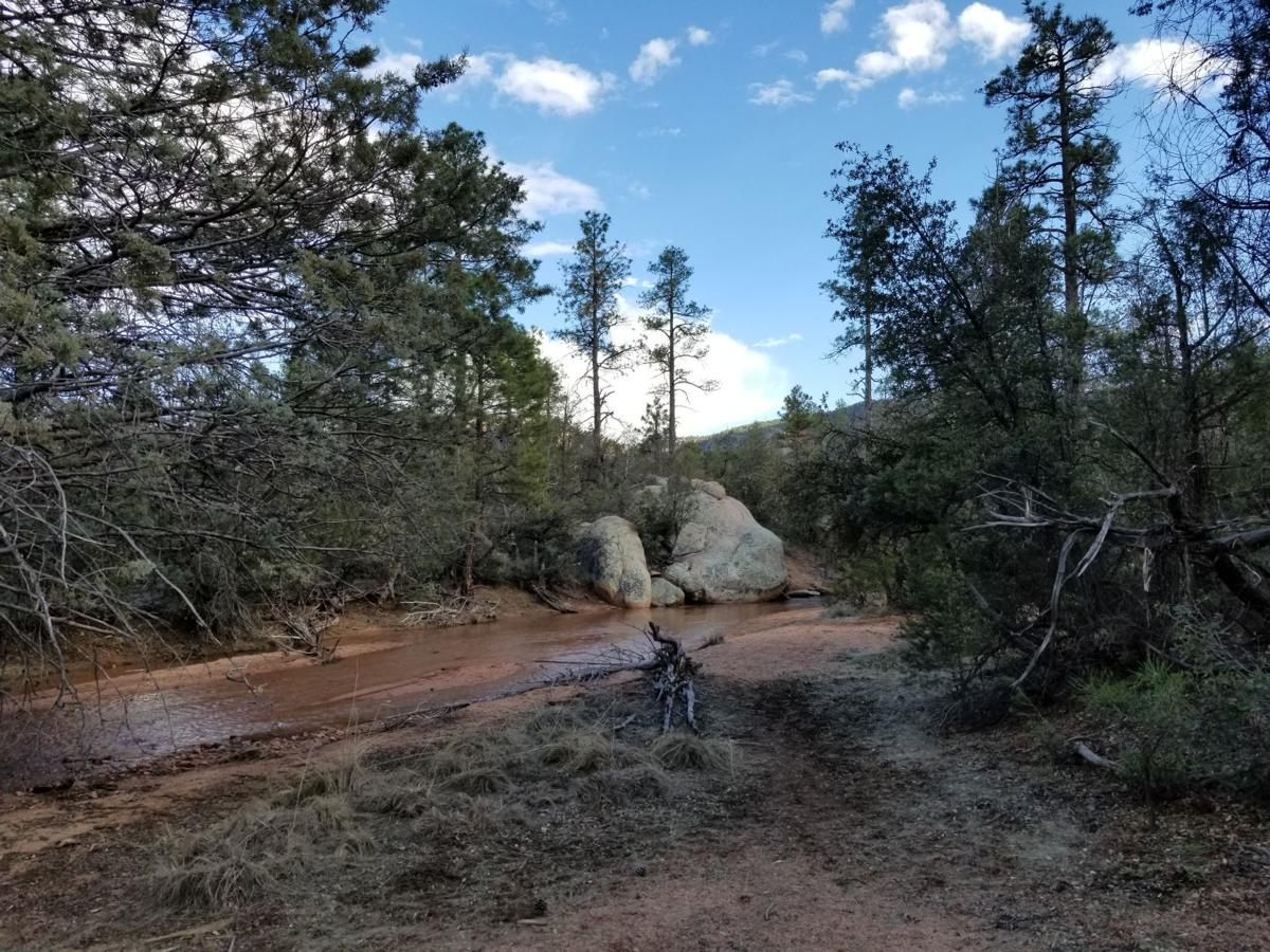 Cypress Trail Water