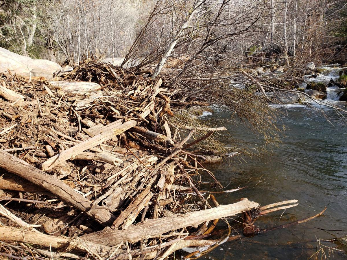 Water Wheel search debris piles