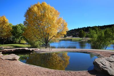 Green Valley Park Fall