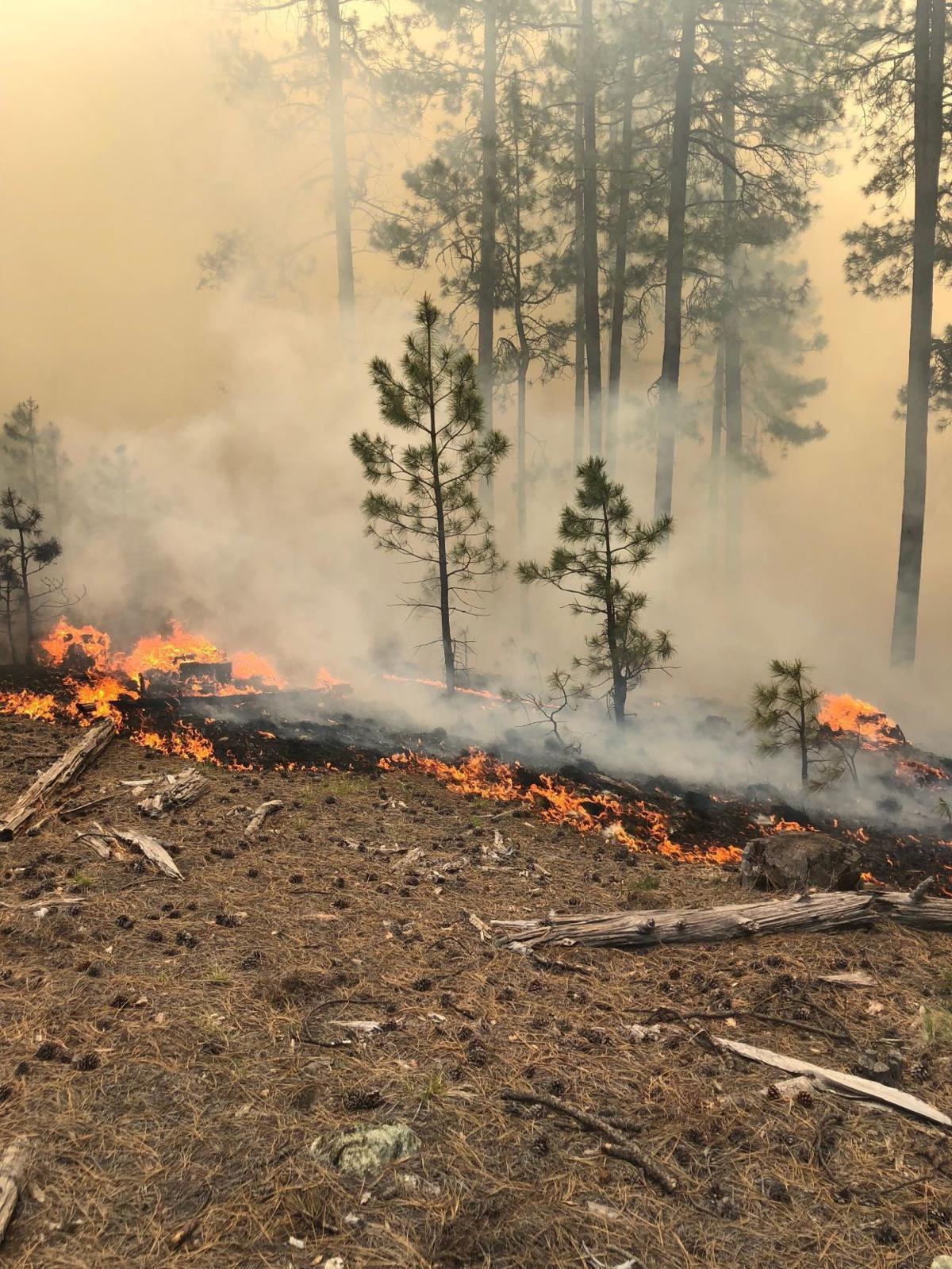 coldwater fire 2.jpg