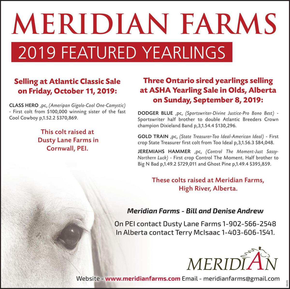 MERIDIAN FARMS