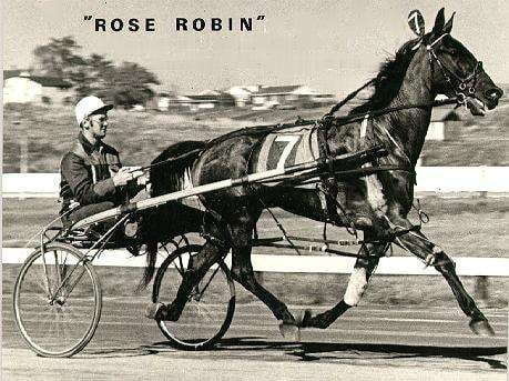 Clarkie Smith, shown above with Rose Robin, had many big nights at all Maritime race tracks.