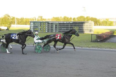 PEI Colt Stakes, Breeders Crown Weekend in Spotlight