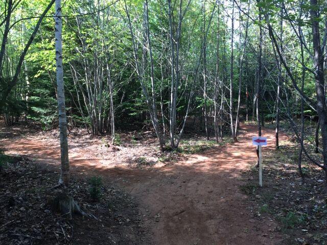 Cardigan trail