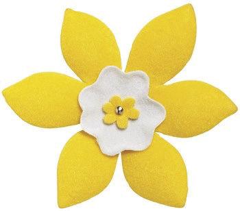 Daffodil cancer society