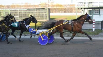 Brushcut wins easy at Charlottetown