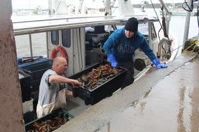 Demand for lobster is up, but not the price