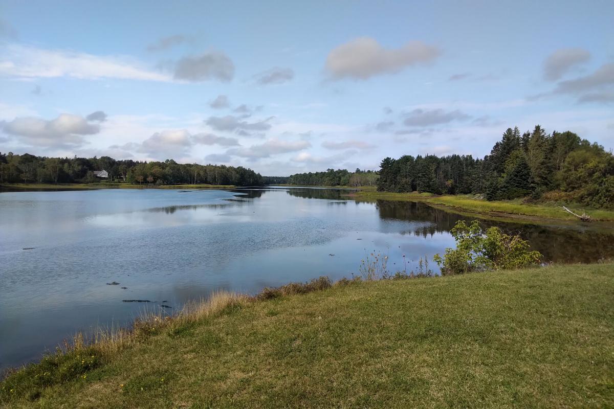 Cardigan River