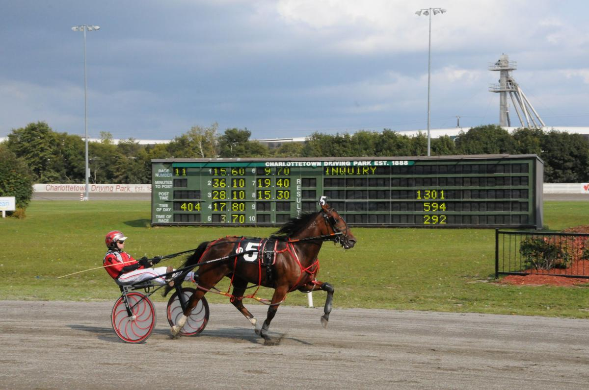 Young Paul Langille scores with Chocolate Terror in 1:59.1 in PEI Colt Stake action in Charlottetown. This filly has a half sister by Vintage Master, Hip #59 in the Classic Sale.