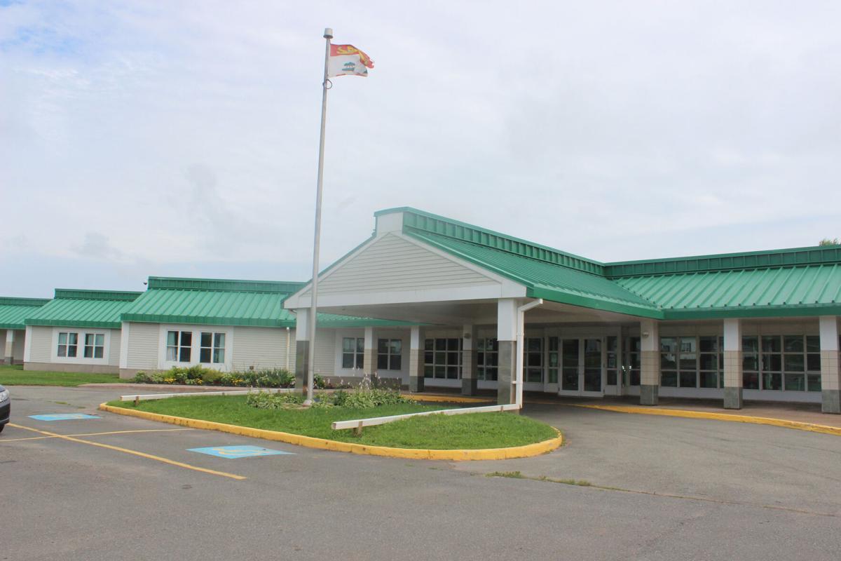 souris hospital