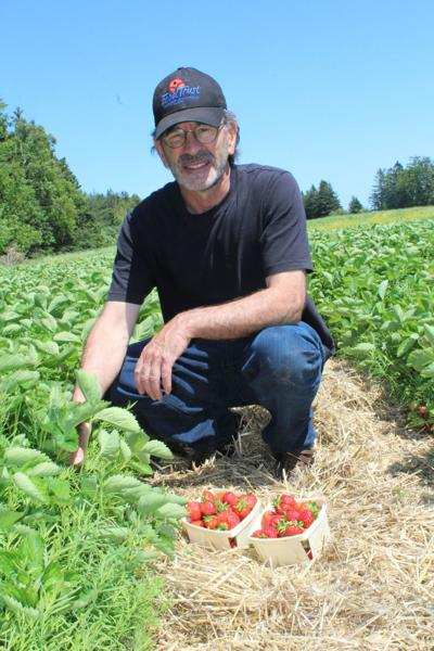 Miserable weather  delays local produce