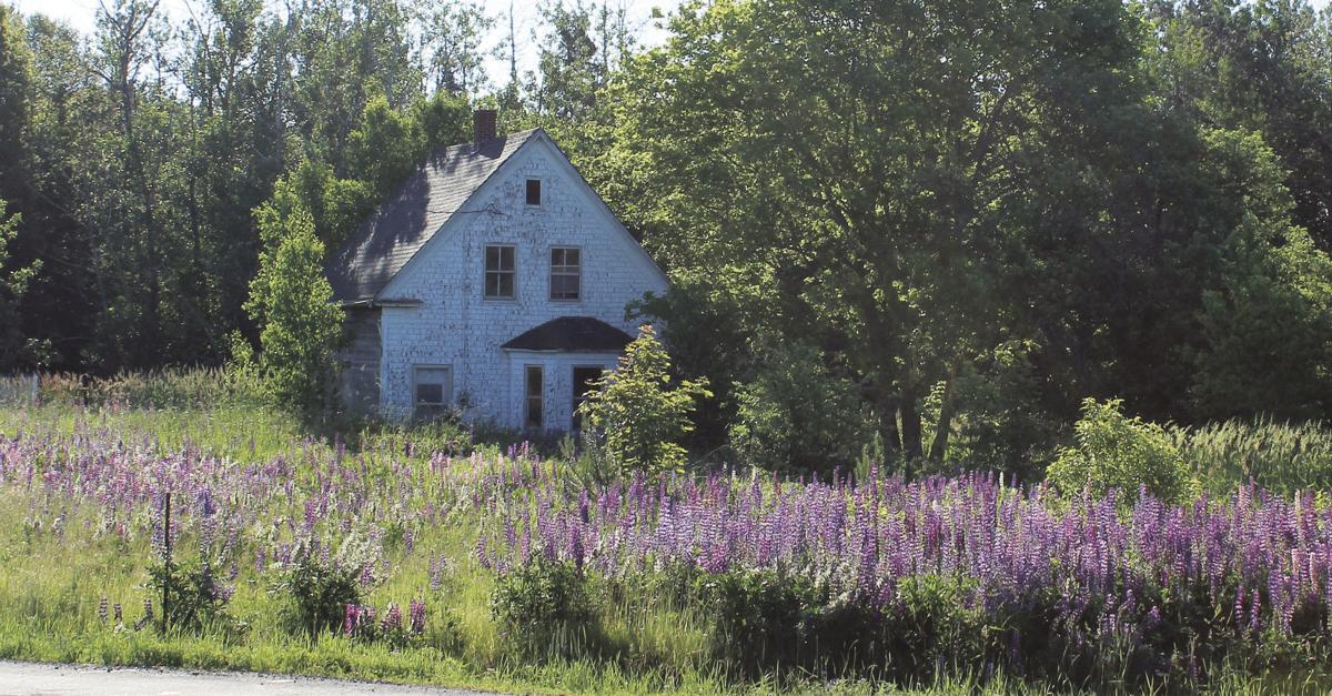 Hicken house