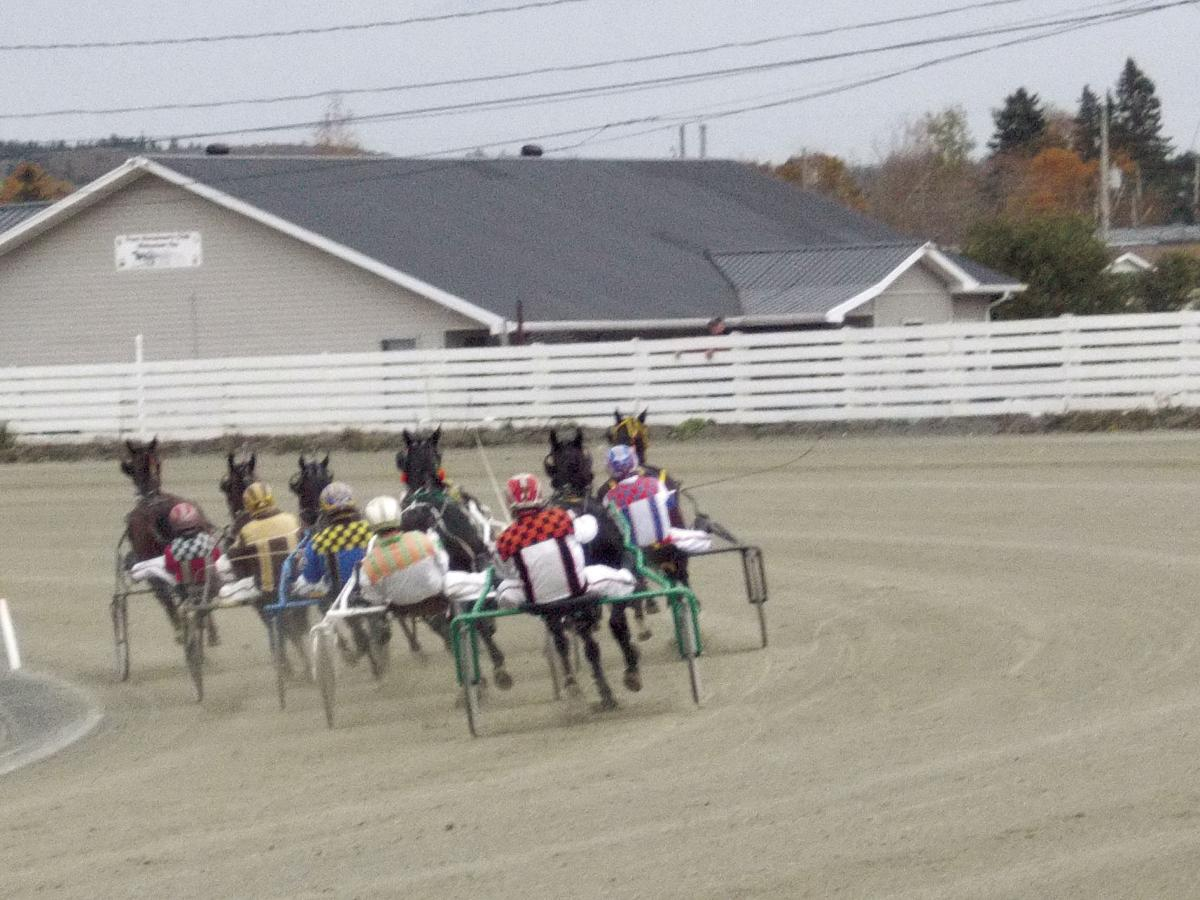 Photo showing horses going into the turn at Truro Raceway.