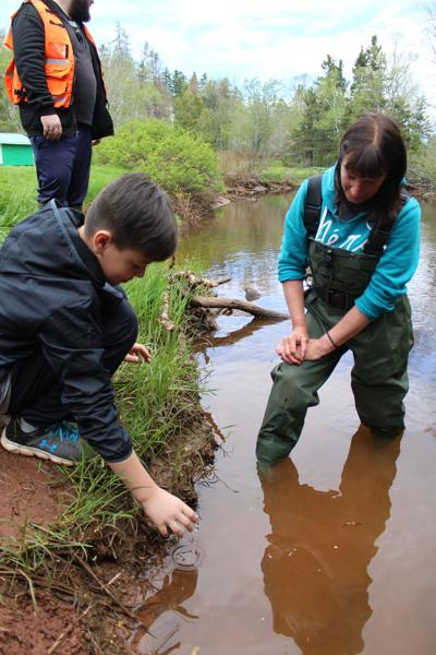 Students help with salmon conservation