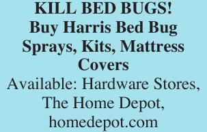 KILL BED BUGS!