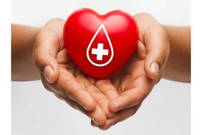 female hands holding red heart with donor sign