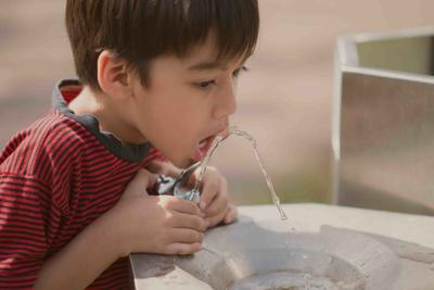 Little boy drinking public water in the park