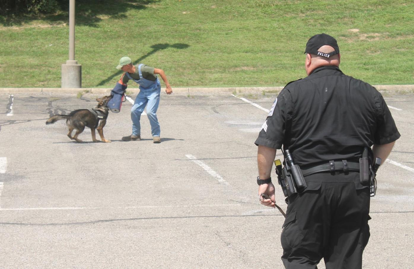 Dallas catching suspect