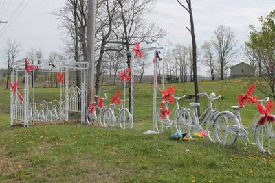 White bicycles reappear on Route 13