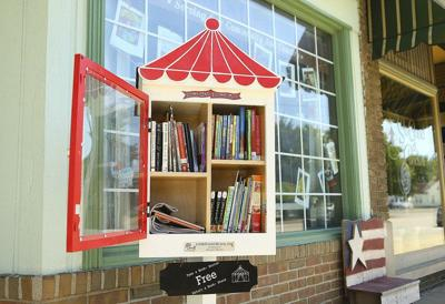 Peru native installs city's first Little Free Library to honor mother