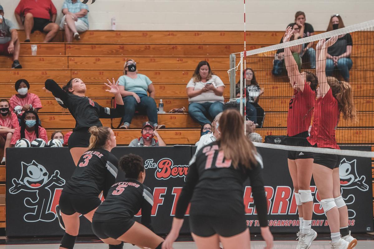 Logansport volleyball