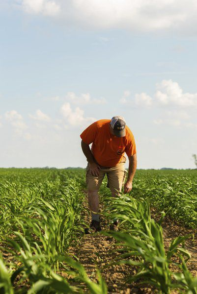 THANK A FARMER: Four generations have turned the soil on Galveston farm