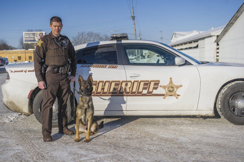 Meet Zeno, Cass County Sheriff's Department's newest K-9 focused on narcotics