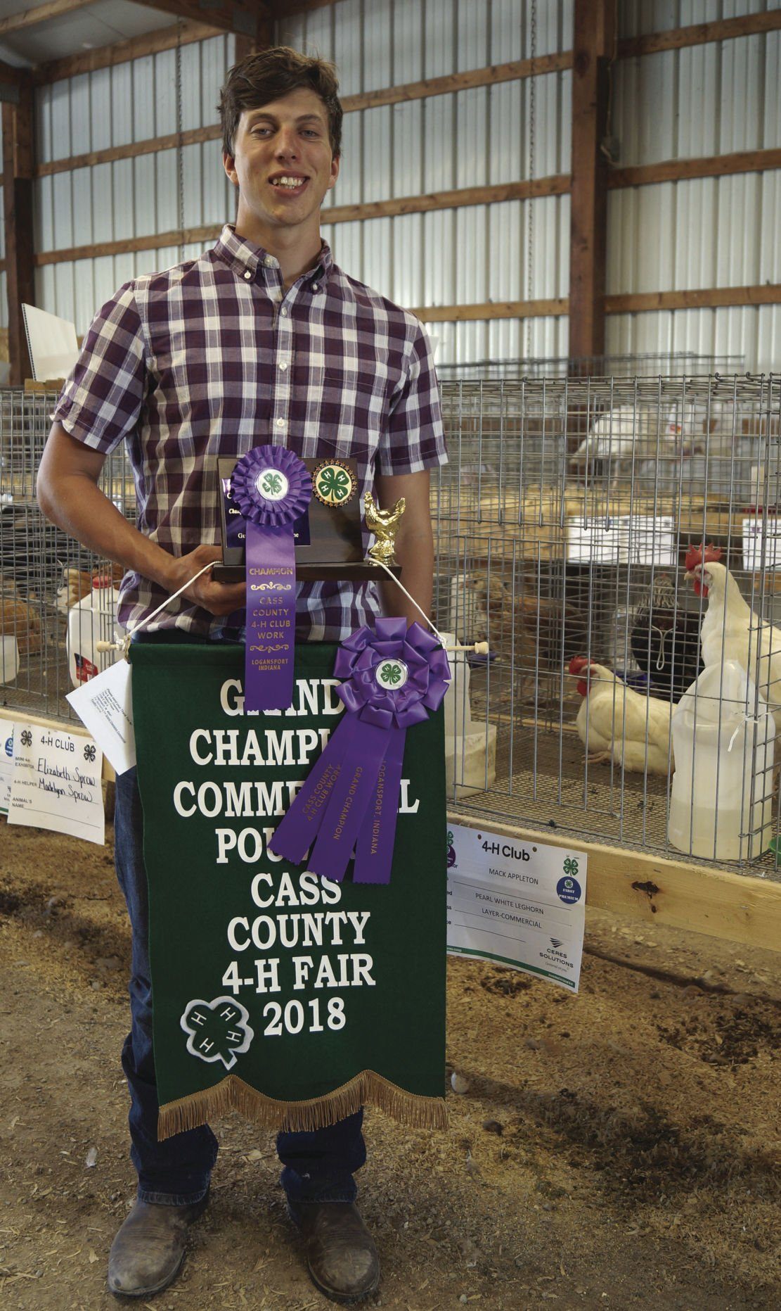 2018 4-H RESULTS: Poultry | Cass County Fair | pharostribune com