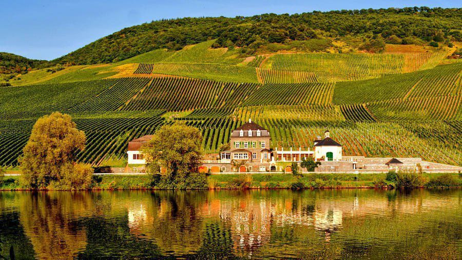 The world's best wineries for 2019
