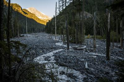 'When the Glaciers Disappear, Those Species Will Go Extinct'