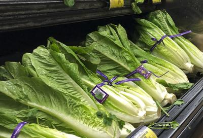 Romaine Outbreak