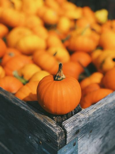 Did you know: Facts about pumpkins