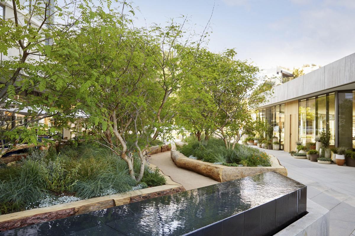 Travel Hotel Design Trends