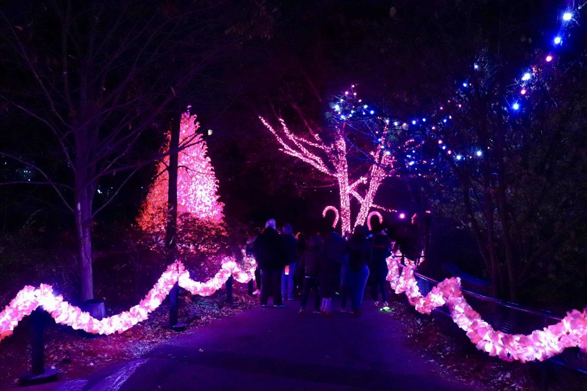LumiNature lights up the Philadelphia Zoo for the holidays