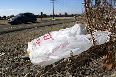 Election California Plastic Bag Fight