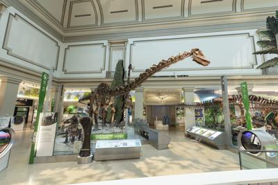 Dinosaurs fossil hall