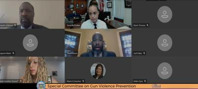 City Council Special Committee on Gun Violence Prevention