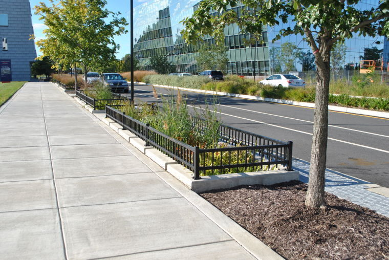 stormwater plantar installed at the navy yard. philadelphia water department grants will allow for further stormwater runoff management systems