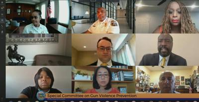 City Council's Special Committee on Gun Violence