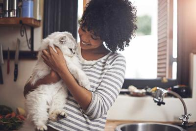 Tips to be fit: Pets and diseases they can spread to us